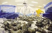 Trung Quốc ngừng bán tôm nhập khẩu của Ecuador do lo ngại SARS-CoV-2