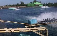 Xuất khẩu thủy sản phấn đấu đạt 10 tỷ USD