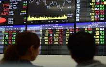 Chất lượng nhà đầu tư trên TTCK Việt Nam đã thay đổi ra sao sau 20 năm giao dịch?