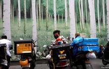 """Chân dung 2 """"tân binh"""" đầy tiềm năng có thể trở thành những Alibaba mới của Trung Quốc"""