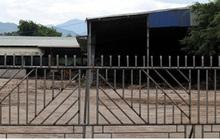 Doanh nghiệp ở Yên Bái nợ tiền tỷ khiến hàng chục hộ dân kêu cứu