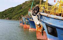 Ngân hàng khởi kiện chủ tàu vỏ thép ra tòa, yêu cầu trả nợ