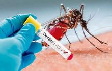 Hà Nội tăng mạnh ca mắc sốt xuất huyết, nhiều ổ dịch phức tạp