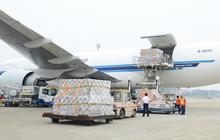 Saigon Cargo Service (SCS) chốt danh sách cổ đông trả cổ tức bằng tiền tỷ lệ 50%