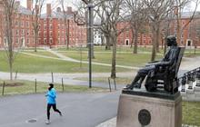 Sinh viên nước ngoài sẽ bị buộc phải rời khỏi Mỹ nếu chỉ học online