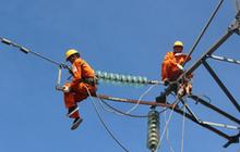 Tư vấn xây dựng điện 2 (TV2) triển khai phương án trả cổ tức bằng cổ phiếu tỷ lệ 50%