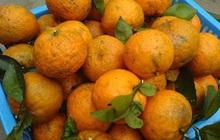 """Hoa quả, nước uống giàu vitamin C """"cháy hàng"""" mùa dịch Covid-19"""