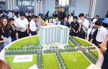 Lượng căn hộ TPHCM bán quý 1 giảm một nửa vì dịch COVID-19