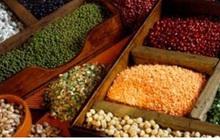 Liên Hợp Quốc cảnh báo thiếu lương thực toàn cầu vì đại dịch