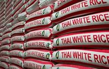 Gạo Thái Lan có giá cao nhất trong vòng 7 năm, Philippines đang chào mua