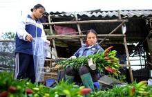"""""""Thủ phủ"""" hoa tại Hà Nội nở rộ giữa dịch COVID-19: Tưởng thắng vụ mà thành bại, hoa cười nhưng người khóc"""