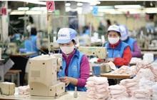 Hà Nội: Khẩu trang vải kháng khuẩn thừa nguồn dự trữ, có thể xuất khẩu