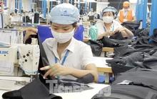 Lao động bị nghỉ việc có thể được hỗ trợ mức cao nhất 1,8 triệu đồng