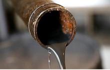 OPEC+ chỉ cắt giảm sản lượng dầu thô khai thác nếu Mỹ cũng tham gia
