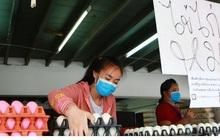 Thái Lan đẩy mạnh xuất khẩu trứng gà