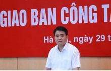 Chủ tịch Hà Nội: Cắt tỉa tất cả cây xanh trong các trường học