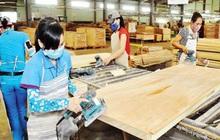 Rủi ro lớn với ngành gỗ Việt Nam