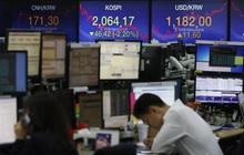 Nikkei: Giới trẻ Hàn ngày càng lười, thích giàu nhanh nhờ chứng khoán