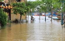 Quảng Nam cho học sinh nghỉ học ngày 27- 28/10 để phòng tránh bão số 9