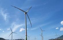 Đắk Lắk đề nghị bổ sung dự án điện gió hơn 2.000 tỷ đồng vào quy hoạch