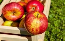 """4 loại thực phẩm bán đầy ngoài chợ được ví là """"thần dược làm thông máu"""", ăn mỗi ngày một ít có thể ngăn ngừa nhồi máu cơ tim"""