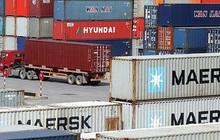Đại lý Vận tải SAFI (SFI): Quý 3 lãi 29 tỷ đồng cao gấp 3 lần cùng kỳ