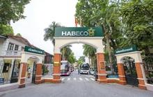 Tiết giảm chi phí quảng cáo, Habeco báo lãi quý 3 cao nhất trong vòng 4 năm, đạt hơn 340 tỷ đồng