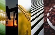 Thị trường ngày 31/10: Giá dầu giảm, vàng hồi phục, cao su đi xuống mạnh