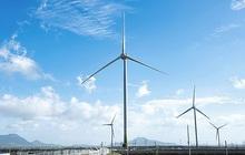 Phú Yên cho phép đầu tư dự án điện gió xanh hơn 1.700 tỷ đồng