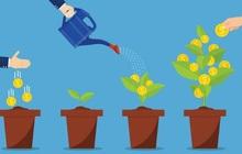 Đề xuất thành lập Liên minh các quỹ đầu tư khởi nghiệp