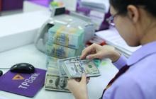 Ngân hàng Nhà nước bất ngờ giảm mạnh giá mua USD