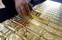 Giá vàng rơi thẳng đứng, xuống 1.775 USD/ounce