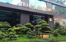 Thị giá trên 100.000 đồng, ThaiHoldings (THD) chào bán hơn 296 triệu cổ phiếu giá 10.000 đồng/cp cho cổ đông hiện hữu