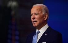 Bị thương khi chơi cùng chó cưng, Tổng thống đắc cử Joe Biden phải vào viện