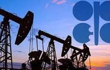 Giá dầu thế giới sụt mạnh khi OPEC bắt đầu bàn việc kéo dài thời hạn nâng sản lượng