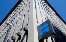 OPEC+ hoãn việc đàm phán tiếp đến 3/12 vì còn có bất đồng, giá dầu lao dốc