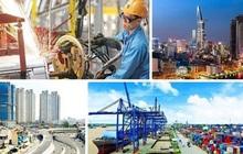 Doanh nghiệp Việt lạc quan về thương mại quốc tế
