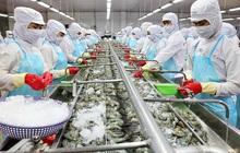 Xuất khẩu thủy sản có thể đạt mốc 8,6 tỷ USD năm 2020