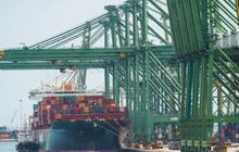 Ngành cảng biển: Bị kìm hãm do thiếu trầm trọng container rỗng, dài hạn vẫn lạc quan nhờ đà dịch chuyển dòng vốn sang Việt Nam