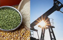 Thị trường ngày 04/12: Giá dầu Brent cao nhất 10 tháng, nhiều hàng hóa khác cùng tăng