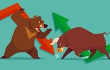 GVR, SAB bứt phá mạnh, VN-Index chốt tuần trên mốc 1.020 điểm
