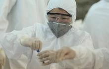 Chùm ca bệnh ở Hải Dương rất đáng lo ngại, Bộ Y tế đang khẩn trương giải mã gen virus gây bệnh