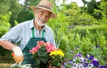 Bí quyết của những người sống thọ trên 100 tuổi: Ngoài ăn uống lành mạnh, tập thể dục đều đặn thì còn 1 điều quan trọng này