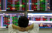 Khối ngoại kéo thị trường bằng SAB, VNM và VIC