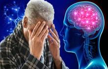 Phát hiện mới: Theo đuổi lối sống lành mạnh ở tuổi trung niên sẽ giúp giảm 40% nguy cơ suy giảm trí nhớ khi về già