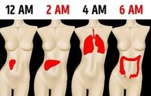 """Sáng nào cũng tỉnh giấc vào đúng """"khung giờ"""" này thì chứng tỏ phổi, thận của bạn đang """"kêu cứu"""", cần theo dõi kỹ để tránh biến chứng"""