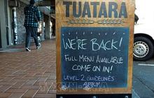 Điểm sáng hiếm hoi New Zealand: 100 ngày 'sạch' COVID-19
