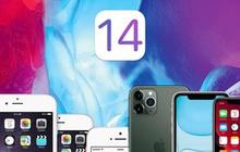iPhone 6S và iPhone SE có nên cập nhật iOS 14?