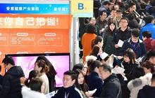 """Hiện tượng """"rùa biển hồi hương"""" phá vỡ kỉ lục: Dấu hiệu xã hội Trung Quốc bắt đầu có chuyển biến lớn?"""
