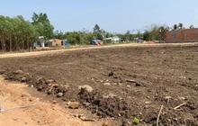 Đồng Nai chi đạo kiểm tra, giám sát việc phân lô bán nền trái phép tại Biên Hòa và Long Khánh